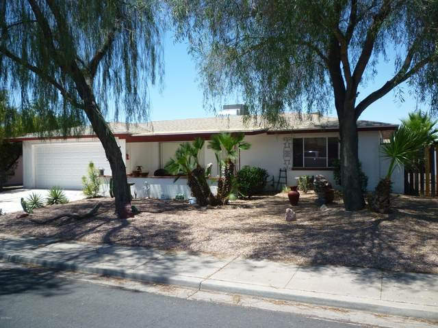 4442 E Dragoon Avenue, Mesa, AZ 85206 (#6102554) :: AZ Power Team | RE/MAX Results