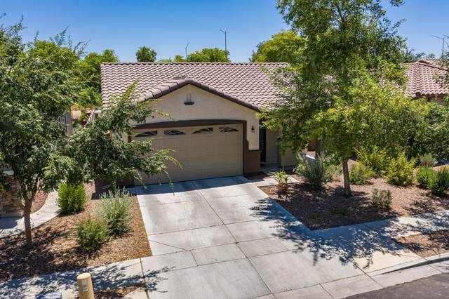 4123 E Cathy Drive, Gilbert, AZ 85296 (MLS #6102559) :: Long Realty West Valley