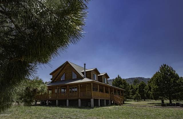 132 E County Road 2130, Nutrioso, AZ 85932 (MLS #6102652) :: Homehelper Consultants