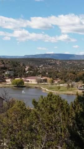 1004 S Montana Circle, Payson, AZ 85541 (MLS #6102657) :: Yost Realty Group at RE/MAX Casa Grande