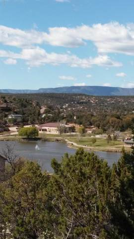 1004 S Montana Circle, Payson, AZ 85541 (MLS #6102657) :: Power Realty Group Model Home Center