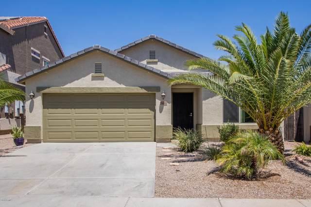 3499 S 257TH Lane, Buckeye, AZ 85326 (MLS #6102691) :: Klaus Team Real Estate Solutions