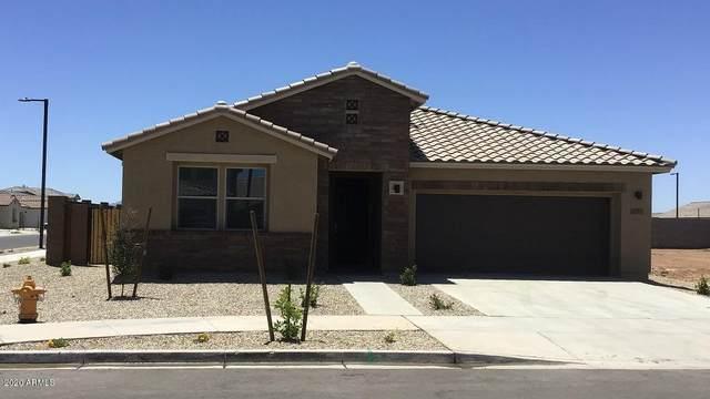 24560 N 143rd Lane, Surprise, AZ 85387 (MLS #6102740) :: Conway Real Estate