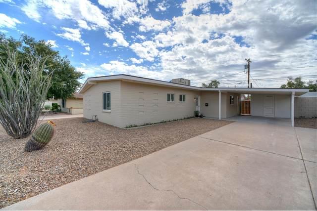 6851 E Windsor Avenue, Scottsdale, AZ 85257 (MLS #6102761) :: Yost Realty Group at RE/MAX Casa Grande