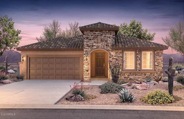 4198 N Spyglass Drive, Florence, AZ 85132 (MLS #6102779) :: Conway Real Estate