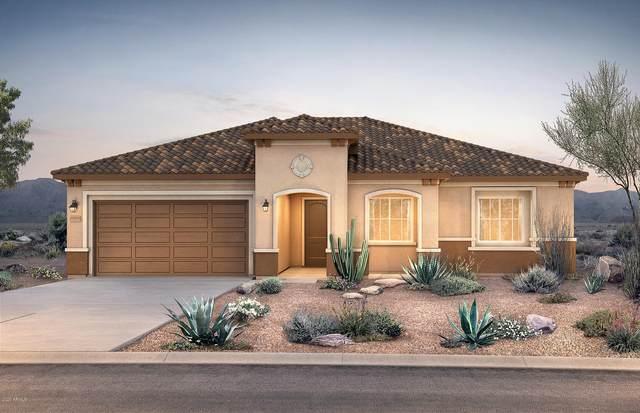 25936 W Jason Drive, Buckeye, AZ 85396 (MLS #6102811) :: Riddle Realty Group - Keller Williams Arizona Realty