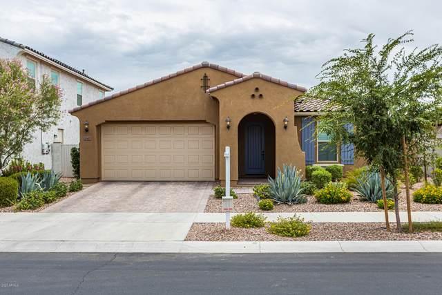 10449 E Sebring Avenue, Mesa, AZ 85212 (#6102829) :: Luxury Group - Realty Executives Arizona Properties