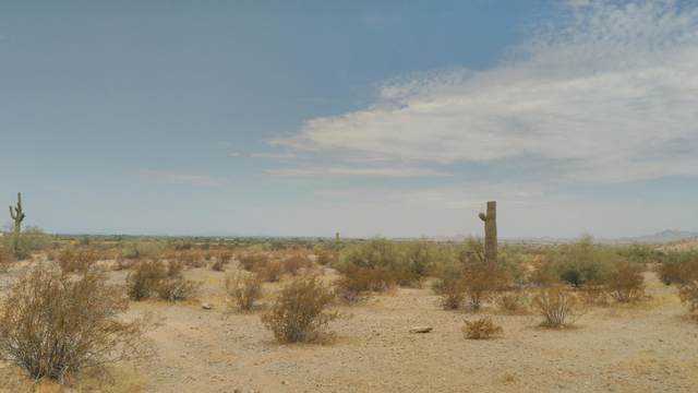 18679 W Santa Irene Drive, Goodyear, AZ 85338 (MLS #6102846) :: Riddle Realty Group - Keller Williams Arizona Realty