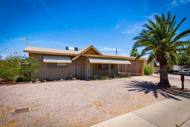 1165 S Delaware Drive, Apache Junction, AZ 85120 (MLS #6102856) :: Keller Williams Realty Phoenix