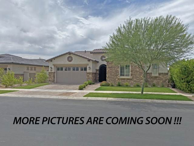4818 S Rhodium Lane, Mesa, AZ 85212 (MLS #6102866) :: Homehelper Consultants