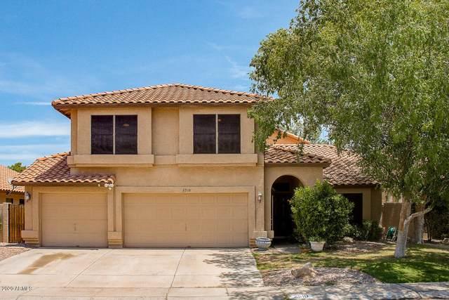 2510 E Taxidea Way, Phoenix, AZ 85048 (MLS #6102878) :: Klaus Team Real Estate Solutions