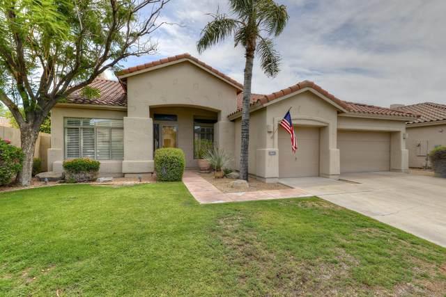 14501 N 98TH Place, Scottsdale, AZ 85260 (MLS #6102898) :: Klaus Team Real Estate Solutions