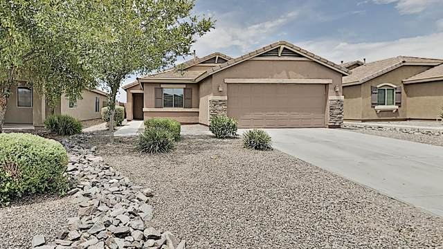 1330 W Danish Red Trail, San Tan Valley, AZ 85143 (MLS #6102926) :: My Home Group