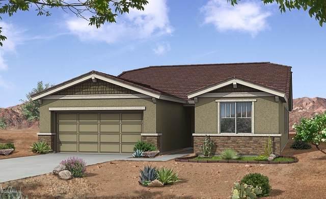 22661 N 122ND Lane, Sun City, AZ 85373 (MLS #6102931) :: neXGen Real Estate