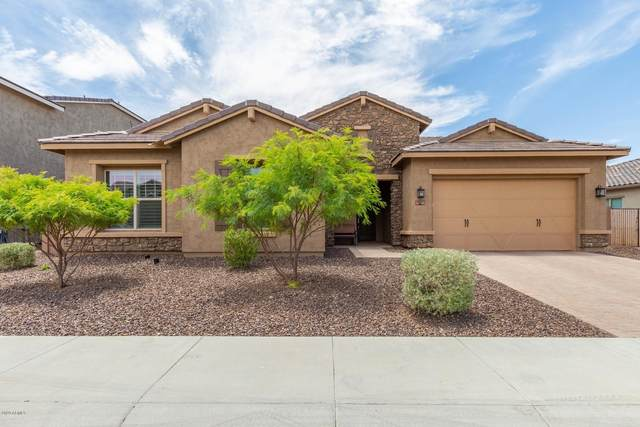 11877 W Ashby Drive, Peoria, AZ 85383 (MLS #6103036) :: Klaus Team Real Estate Solutions