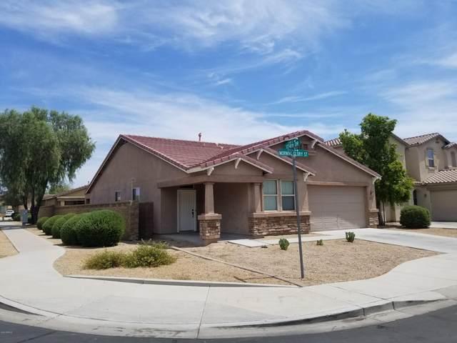 17454 W Morning Glory Street, Goodyear, AZ 85338 (MLS #6103042) :: Keller Williams Realty Phoenix