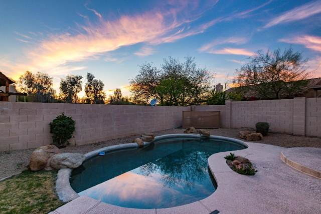 14577 N 99TH Street, Scottsdale, AZ 85260 (MLS #6103054) :: Lux Home Group at  Keller Williams Realty Phoenix