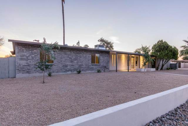 12216 N 64TH Street, Scottsdale, AZ 85254 (MLS #6103069) :: Lucido Agency