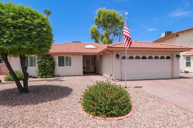 26022 S Cedarcrest Drive, Sun Lakes, AZ 85248 (MLS #6103138) :: Riddle Realty Group - Keller Williams Arizona Realty