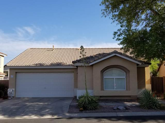 6660 E Virginia Street, Mesa, AZ 85215 (MLS #6103148) :: The Luna Team