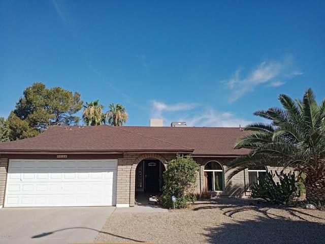 6616 W Mercer Lane, Glendale, AZ 85304 (MLS #6103226) :: Keller Williams Realty Phoenix