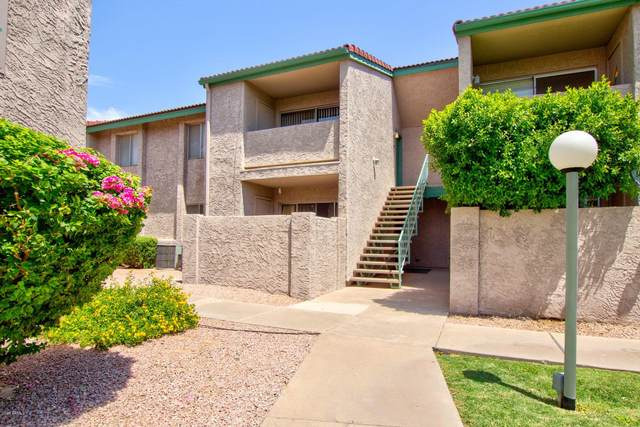 623 W Guadalupe Road #205, Mesa, AZ 85210 (MLS #6103240) :: Nate Martinez Team