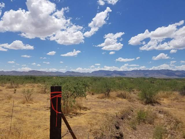 10000 N Fort Grant Road, Willcox, AZ 85643 (MLS #6103260) :: Service First Realty