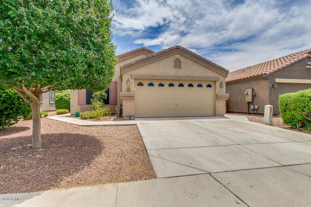 11735 W Avenida Del Sol, Sun City, AZ 85373 (MLS #6103262) :: Long Realty West Valley