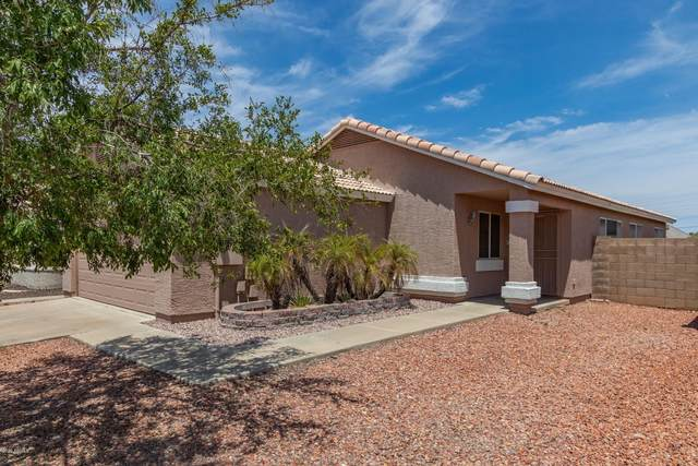3112 W Salter Drive, Phoenix, AZ 85027 (MLS #6103282) :: REMAX Professionals
