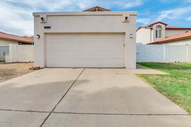 5026 W Gelding Drive, Glendale, AZ 85306 (MLS #6103287) :: Nate Martinez Team