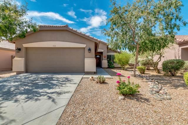 17255 W Elizabeth Avenue, Goodyear, AZ 85338 (MLS #6103343) :: Keller Williams Realty Phoenix