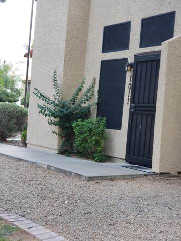 921 W University Drive #1011, Mesa, AZ 85201 (MLS #6103346) :: Klaus Team Real Estate Solutions