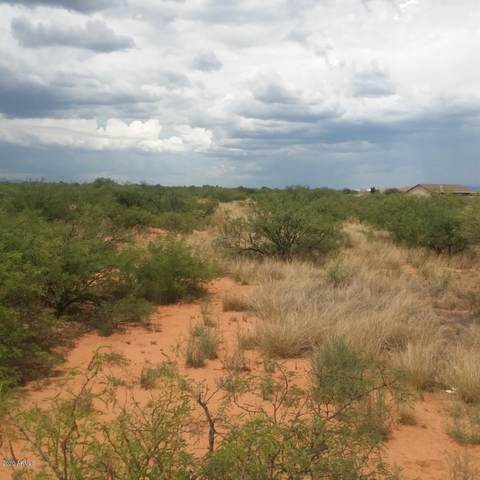 00000 E Rocking Ranch Road, Hereford, AZ 85615 (MLS #6103618) :: Conway Real Estate