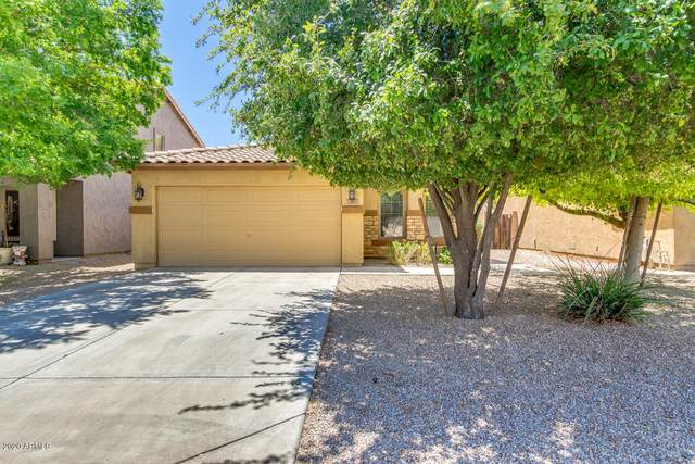 1697 E Maddison Circle, San Tan Valley, AZ 85140 (MLS #6103635) :: BIG Helper Realty Group at EXP Realty