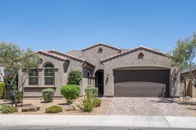 1669 N 156TH Drive, Goodyear, AZ 85395 (MLS #6103648) :: Klaus Team Real Estate Solutions