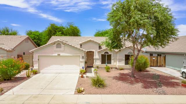 13422 W Ironwood Street, Surprise, AZ 85374 (MLS #6103653) :: Klaus Team Real Estate Solutions