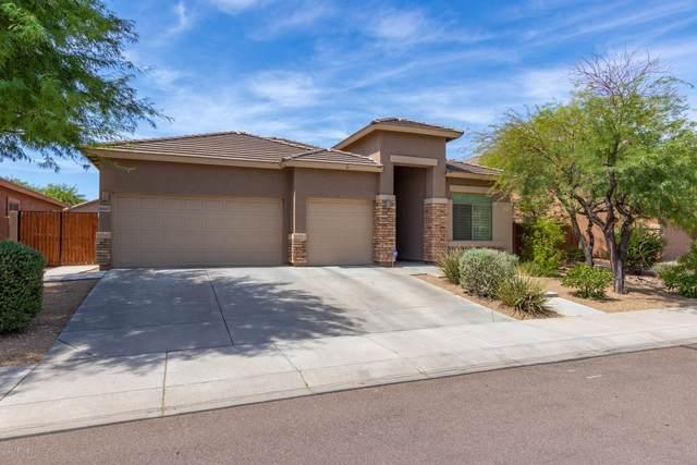 8347 W Maya Drive, Peoria, AZ 85383 (MLS #6103719) :: Maison DeBlanc Real Estate
