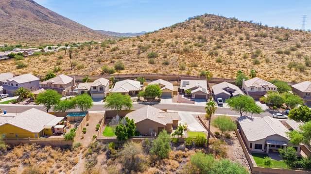 24630 N 65th Avenue, Glendale, AZ 85310 (MLS #6103774) :: Klaus Team Real Estate Solutions