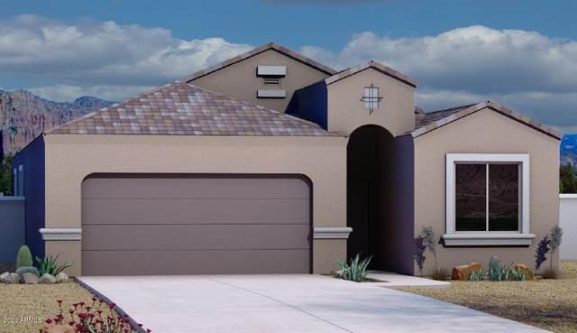 1135 E Tyler Lane, Casa Grande, AZ 85122 (MLS #6103779) :: REMAX Professionals