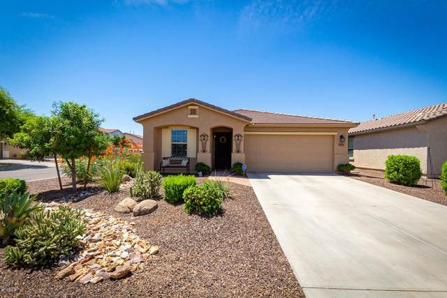 1125 E Daniella Drive, San Tan Valley, AZ 85140 (MLS #6103781) :: BIG Helper Realty Group at EXP Realty
