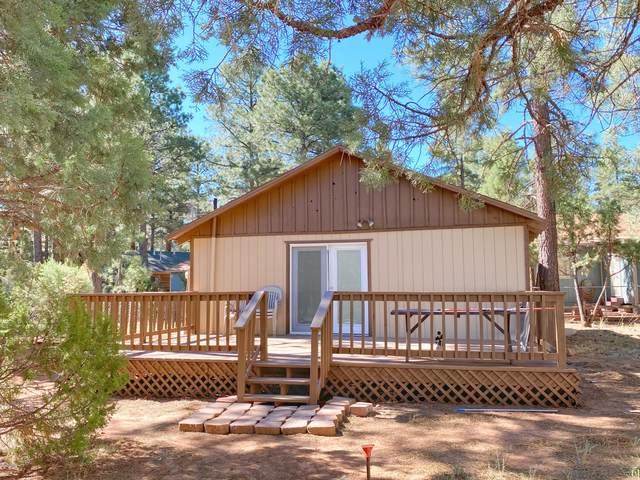 2167 Lone Star Drive, Overgaard, AZ 85933 (MLS #6103787) :: My Home Group