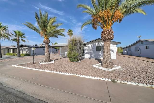 1486 S Main Drive, Apache Junction, AZ 85120 (MLS #6103792) :: REMAX Professionals