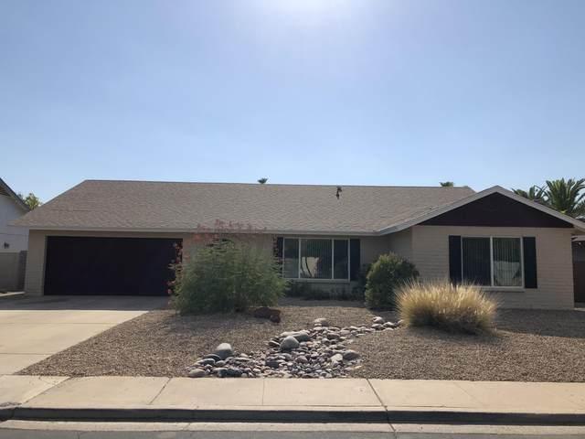 2734 S Davis Street, Mesa, AZ 85210 (MLS #6103865) :: Yost Realty Group at RE/MAX Casa Grande