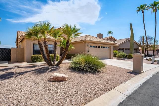 10413 E Deerhorn Court, Sun Lakes, AZ 85248 (MLS #6103871) :: BIG Helper Realty Group at EXP Realty