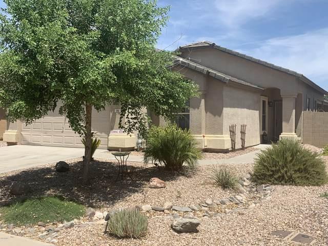 96 W Dexter Way, San Tan Valley, AZ 85143 (MLS #6103984) :: Klaus Team Real Estate Solutions