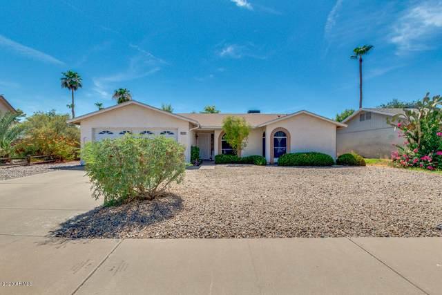 3200 N Brentwood Place, Chandler, AZ 85224 (MLS #6104100) :: Klaus Team Real Estate Solutions