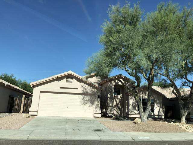 16605 N 23RD Place, Phoenix, AZ 85022 (MLS #6104283) :: Openshaw Real Estate Group in partnership with The Jesse Herfel Real Estate Group