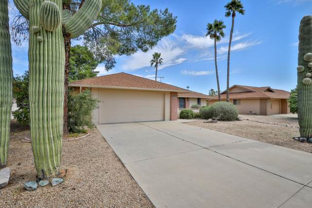 13002 W Meeker Boulevard, Sun City West, AZ 85375 (MLS #6104336) :: Balboa Realty