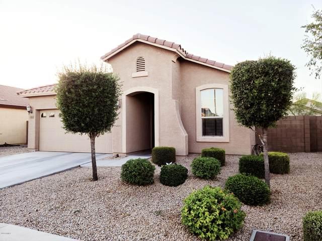 16968 W Mohave Street, Goodyear, AZ 85338 (MLS #6104548) :: Lucido Agency