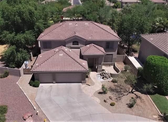 1426 E Appaloosa Court, Gilbert, AZ 85296 (MLS #6104682) :: The Property Partners at eXp Realty